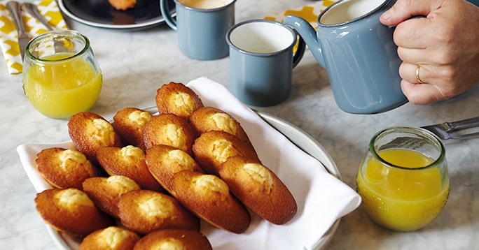 Our New Magnificent Madeleines